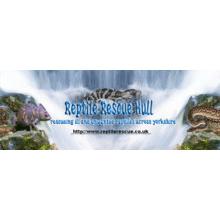 Reptile Rescue Hull