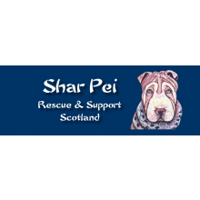 Shar Pei Rescue & Support Scotland
