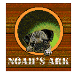 Noah's Ark Animal Welfare