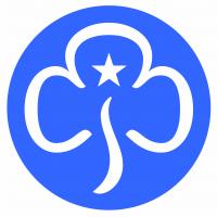 3rd Farnborough Guides