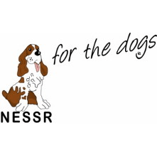 Northern English Springer Spaniel Rescue