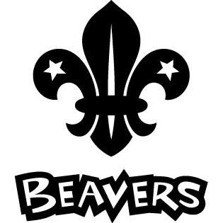 1st Pegswood Beavers