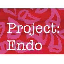 Project Endo CIC