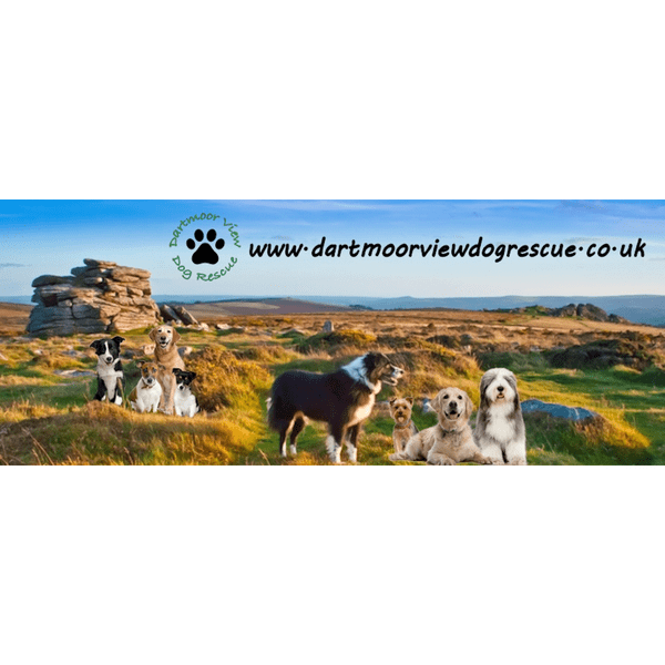 Dartmoor View Dog Rescue