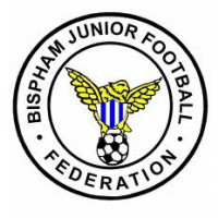 BJFF Vipers under 8