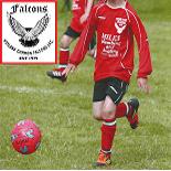 Hoyland Common Falcons J.F.C. U7's