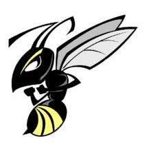 Hull Hornets AFC