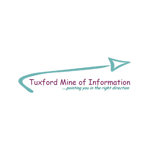 Mine of Information Ltd
