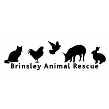 Brinsley Animal Rescue