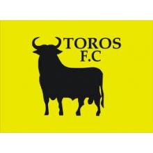 Toros Juniors Football Club