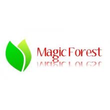 Magic Forest Community Interest Company, Nottingham