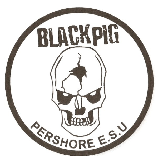 Black Pig Explorer Scouts - Kandersteg Fund 2014