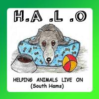 H.A.L.O. Helping Animals Live On, Kingsbridge