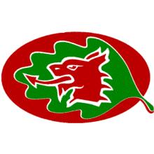 Celyn Polocrosse Club