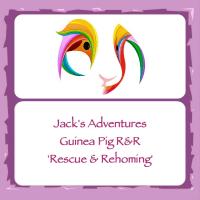 Jack's Adventures Fundraiser