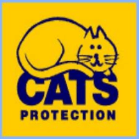 Northampton Cats Protection