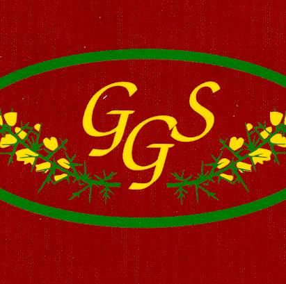 Gorsley Goffs Primary School PTFA - Ross-on-Wye