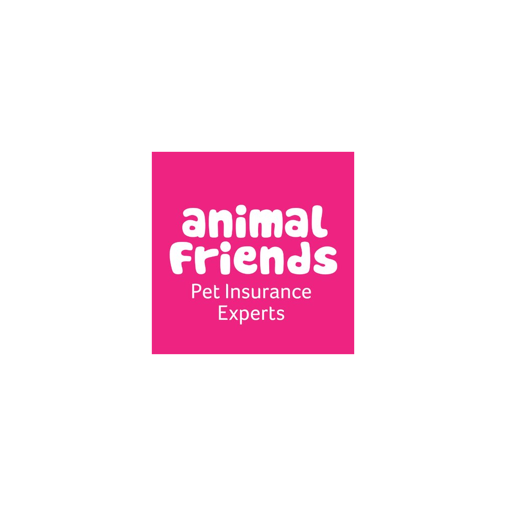 Animal Friends Cat & Dog Insurance