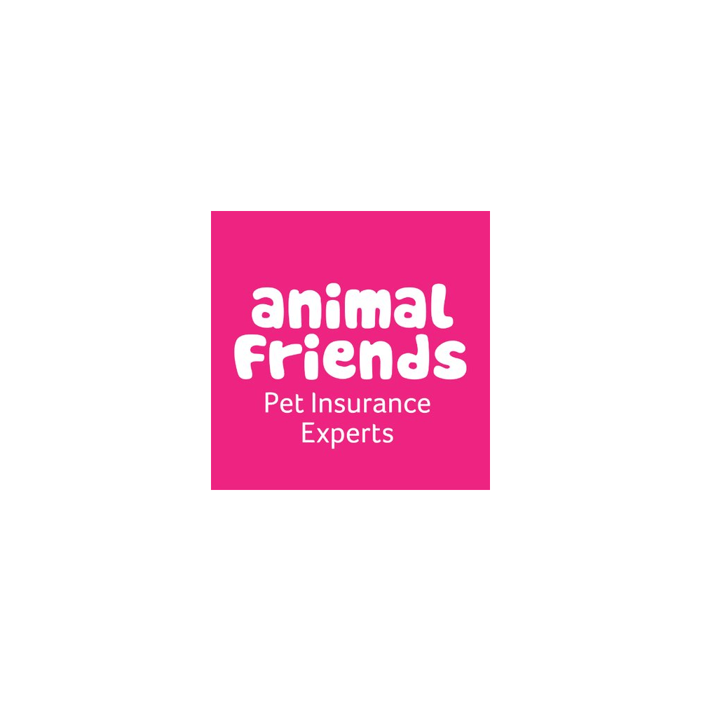 Animal Friends Horse & Rider Insurance