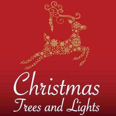 ChristmasTreesAndLights